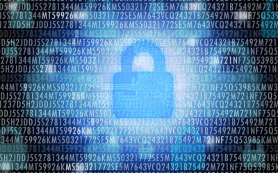 Is Your Company Safe from Data Breaches?
